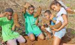 La récolte des ignames : un article dans les Nouvelles Calédoniennes !